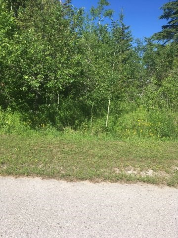 Great lot with view of St. Mary's River in De Tour Village