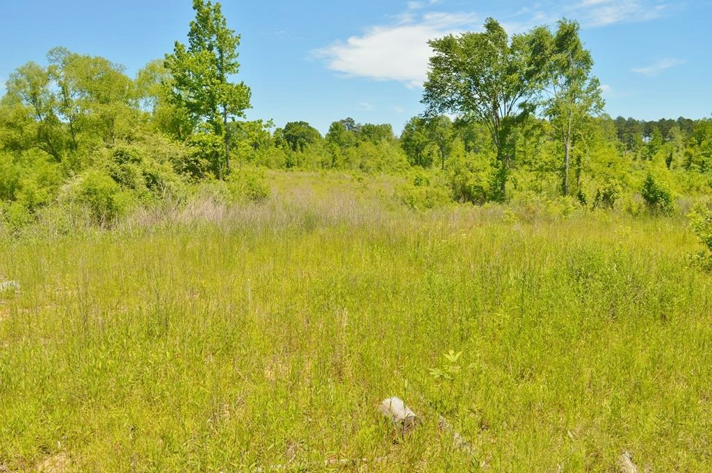2.87 Acres Land for Sale Lincoln County, MS
