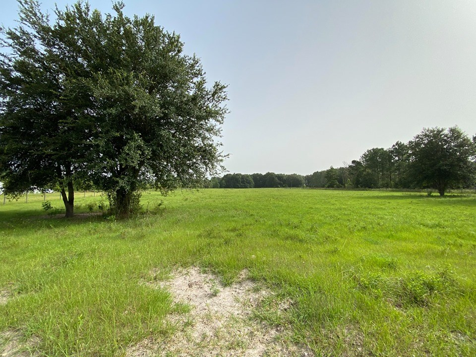 5 ACRES FOR SALE - BELL, GILCHRIST COUNTY, FL