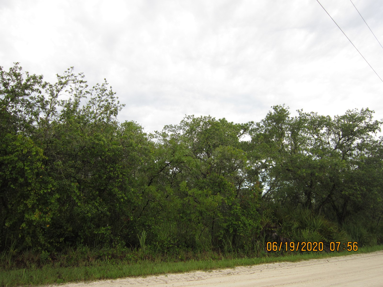 BUILD YOUR DREAM HOME, WOODED VACANT LOT, CENTRAL FLORIDA