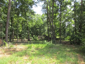 MOUNTAIN VIEW LAND FOR SALE
