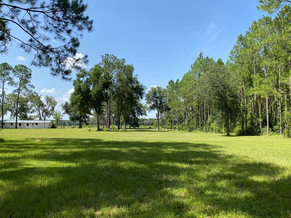 TRENTON FLORIDA LAND/HOME FOR SALE