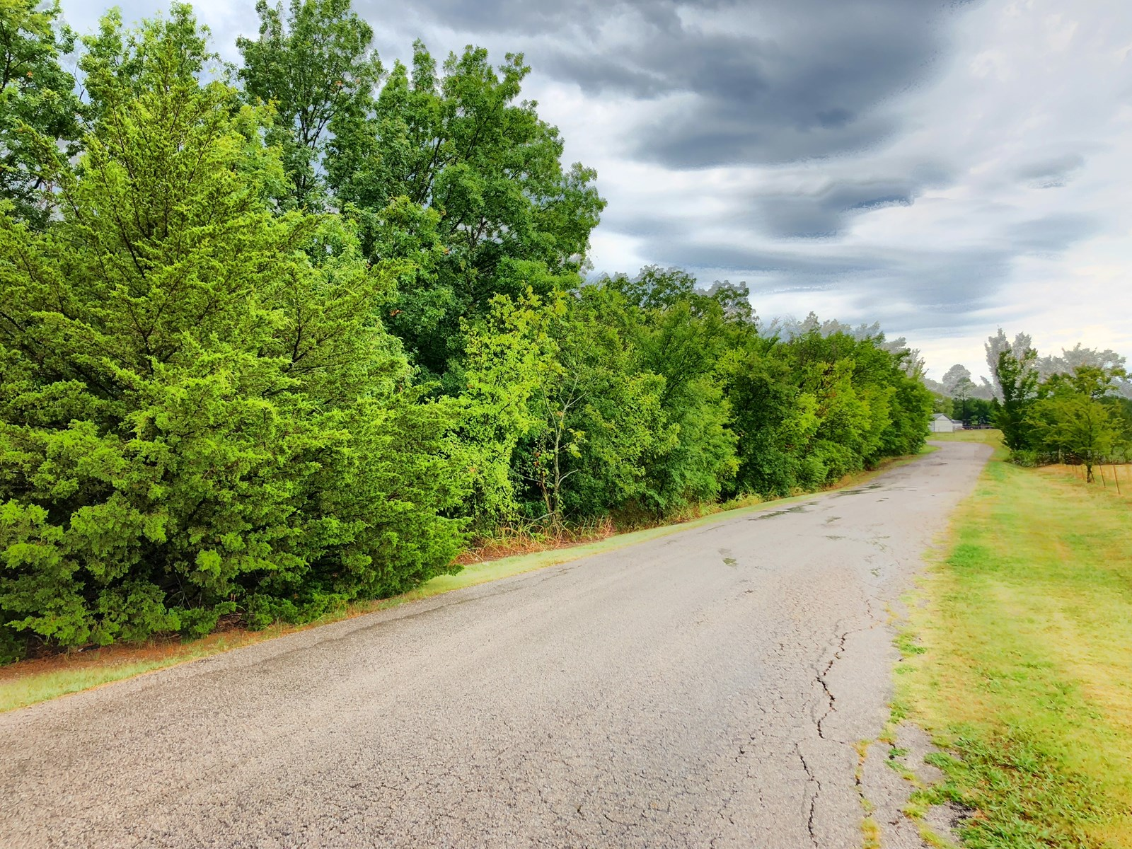 SOUTHERN OKLAHOMA WOODED ACREAGE FOR SALE-PLAINVIEW SCHOOLS