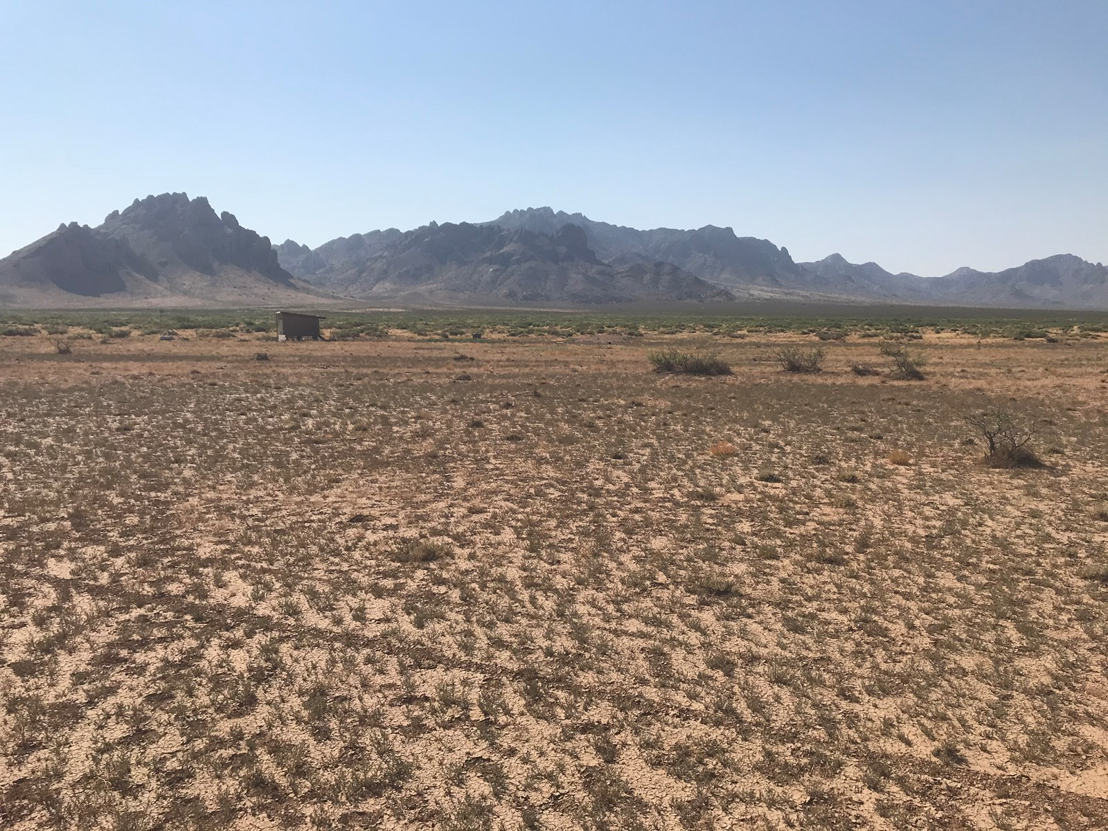 Land for sale in Deming NM