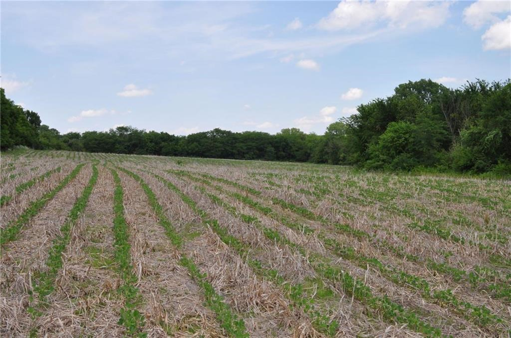 40+/- Acre Farm w/ Excellent Hunting Gentry County MO