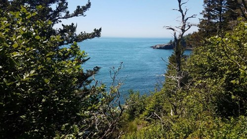 Coastal Land for Sale in Lubec, ME