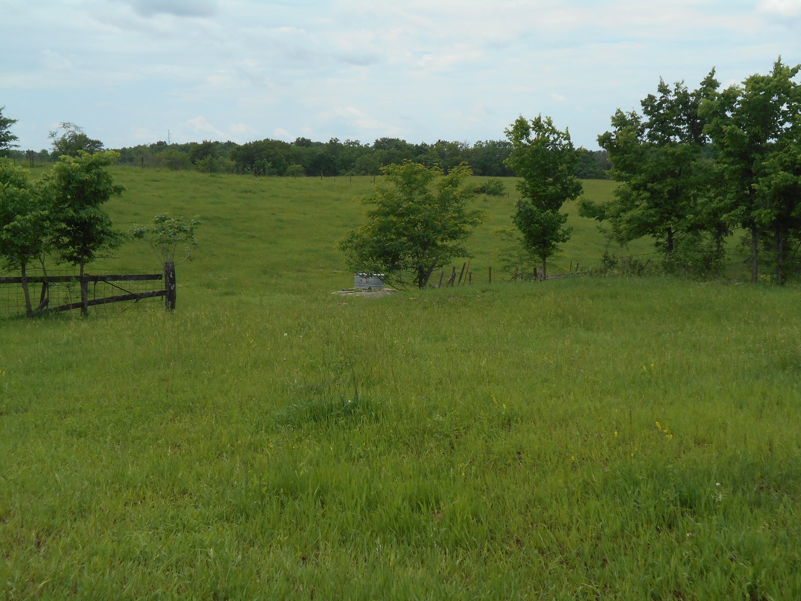 CAMERON MO 33 ACRES FOR SALE - HUNTING, REC & HOMESITE