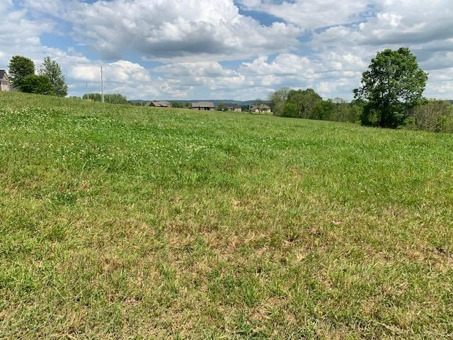 485 Burgess Mill Rd Cookeville TN, Building lot