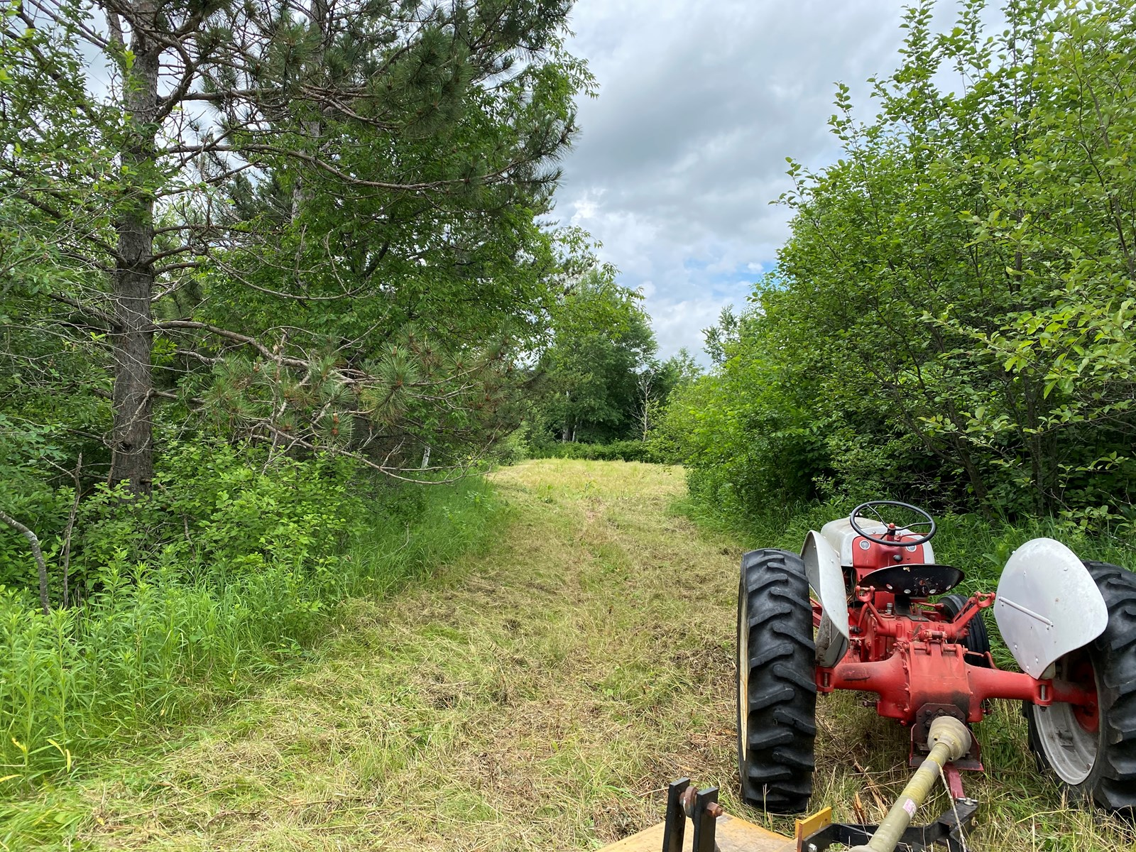 Acreage for Sale in Finlayson MN for Hunting , Hobby Farm