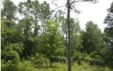 Beautiful 10 acres with road cleared onto property.