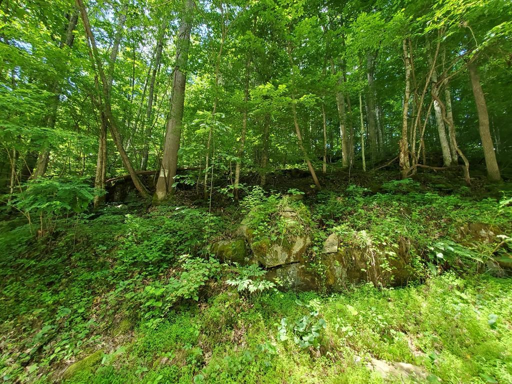 Recreational Lot for Sale in Bristol VA