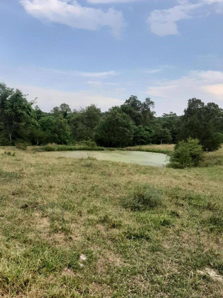 50 Secluded Acres in the Beautiful Missouri Ozarks.