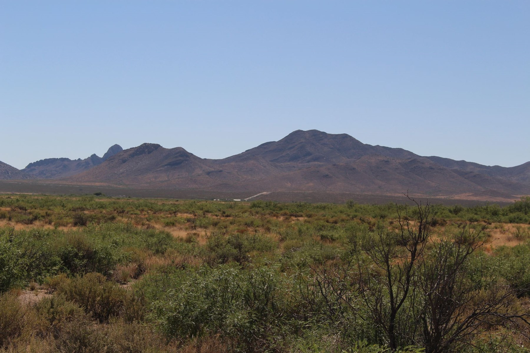 *NEW* 530+/- Acre Homestead with Home near Cotton City, NM