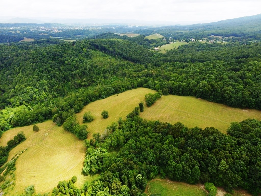 Mountain tract with open & wooded acreage in Wytheville, VA