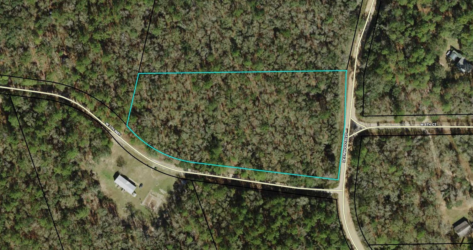 Land for Sale for in North Florida
