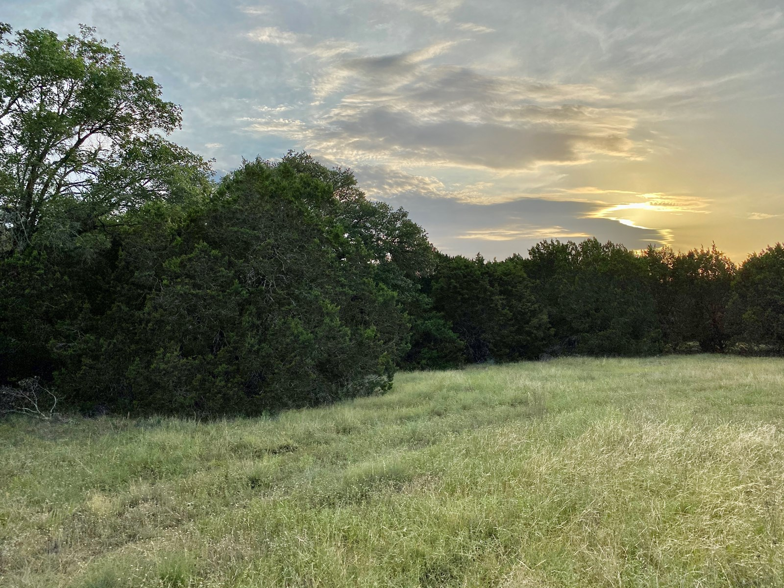 Hunting Property Coryell County Central Texas