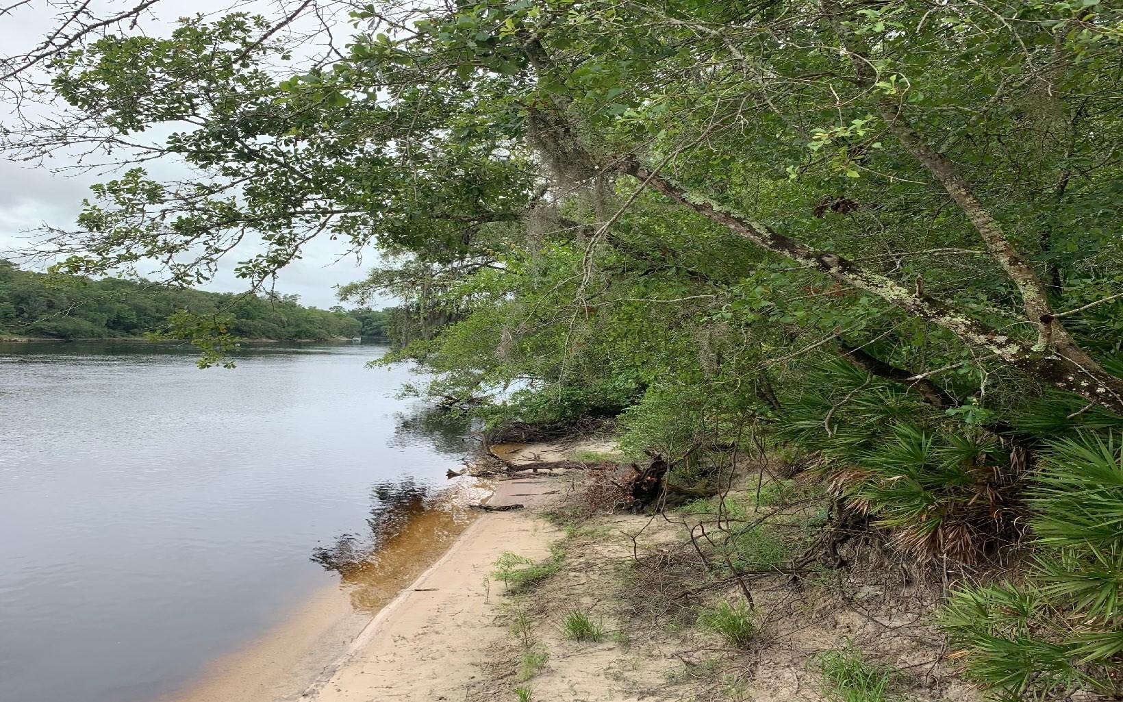 Suwannee River front lot