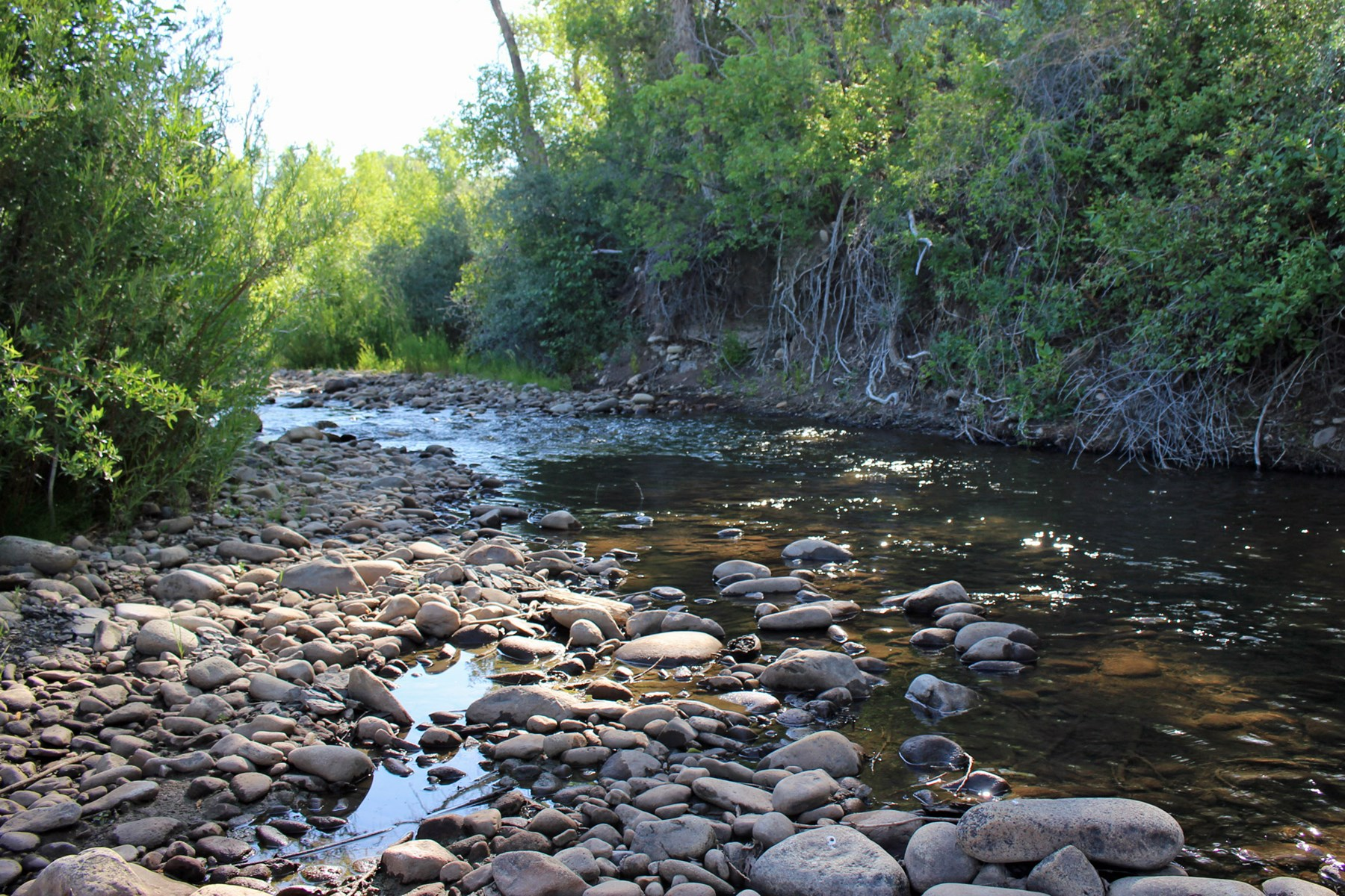 Ten acre river front property for sale in Mancos, Colorado