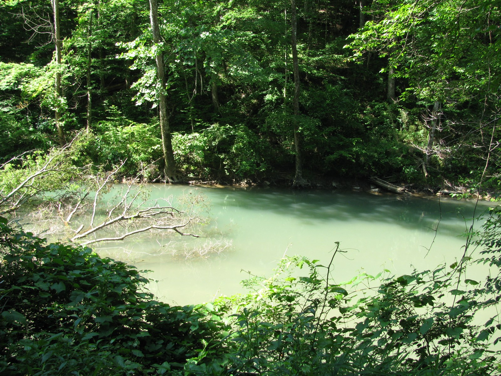 CREEK FRONT LOT FOR SALE ON INDIAN CREEK IN SAVANNAH, TN