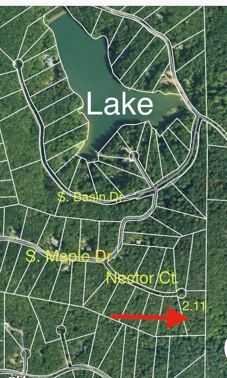 Mountain Land for sale in Jasper, GA