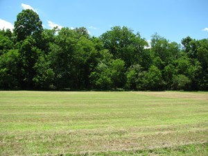 WATERFRONT FISHING LOT FOR SALE IN SAVANNAH, TN, CAMPING