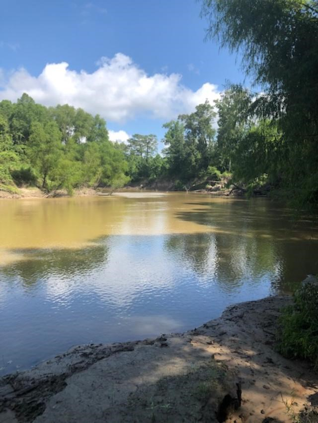 192 AC NECHEZ RIVER LAND FOR SALE HUNTING FISHING RECREATION