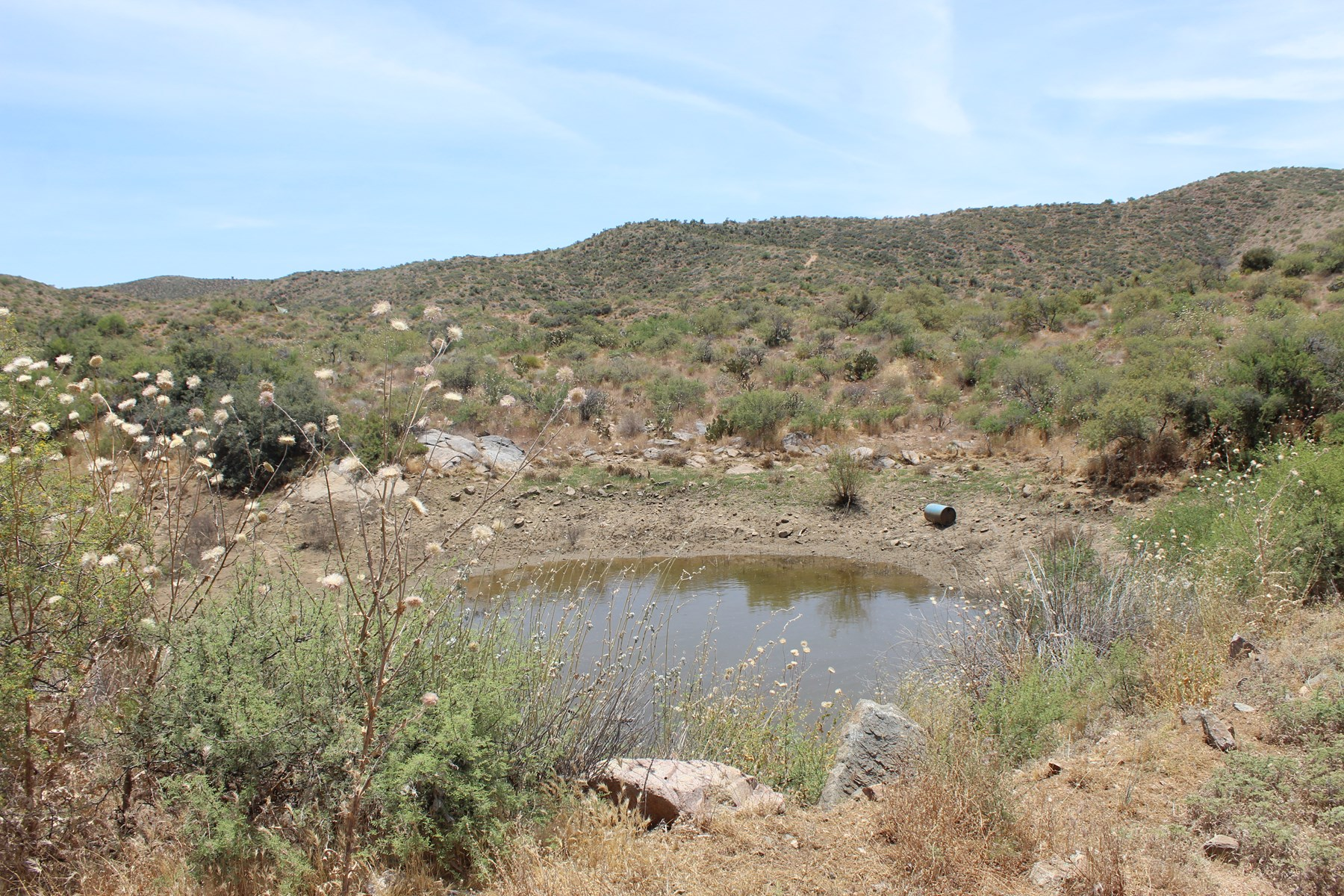 Wickenburg Mining Claim / Borders BLM Land / for sale