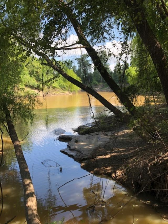 297.8 ACRES WITH BEAUTIFUL HOME ON NECHEZ RIVER FOR SALE