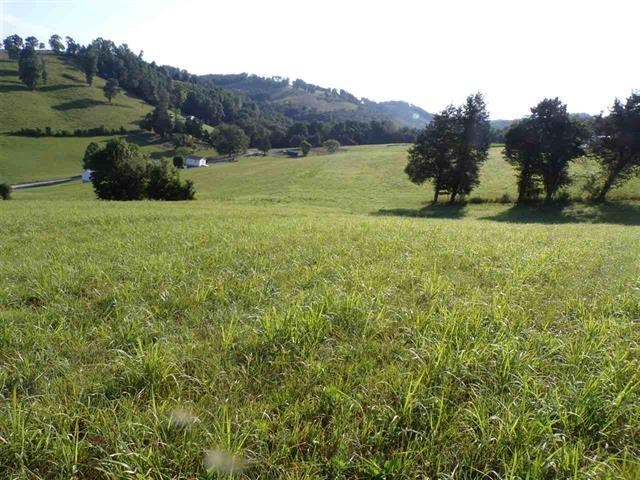Farmland For Sale in Claiborne County Tennessee Harrogate