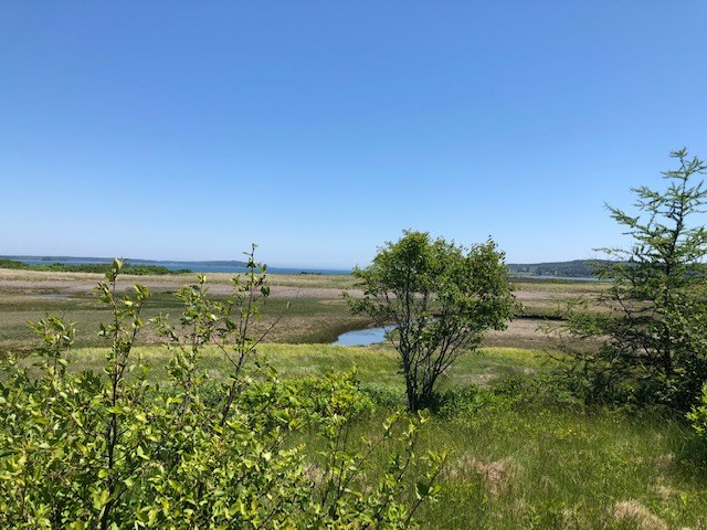 Land For Sale in Washington County, Maine