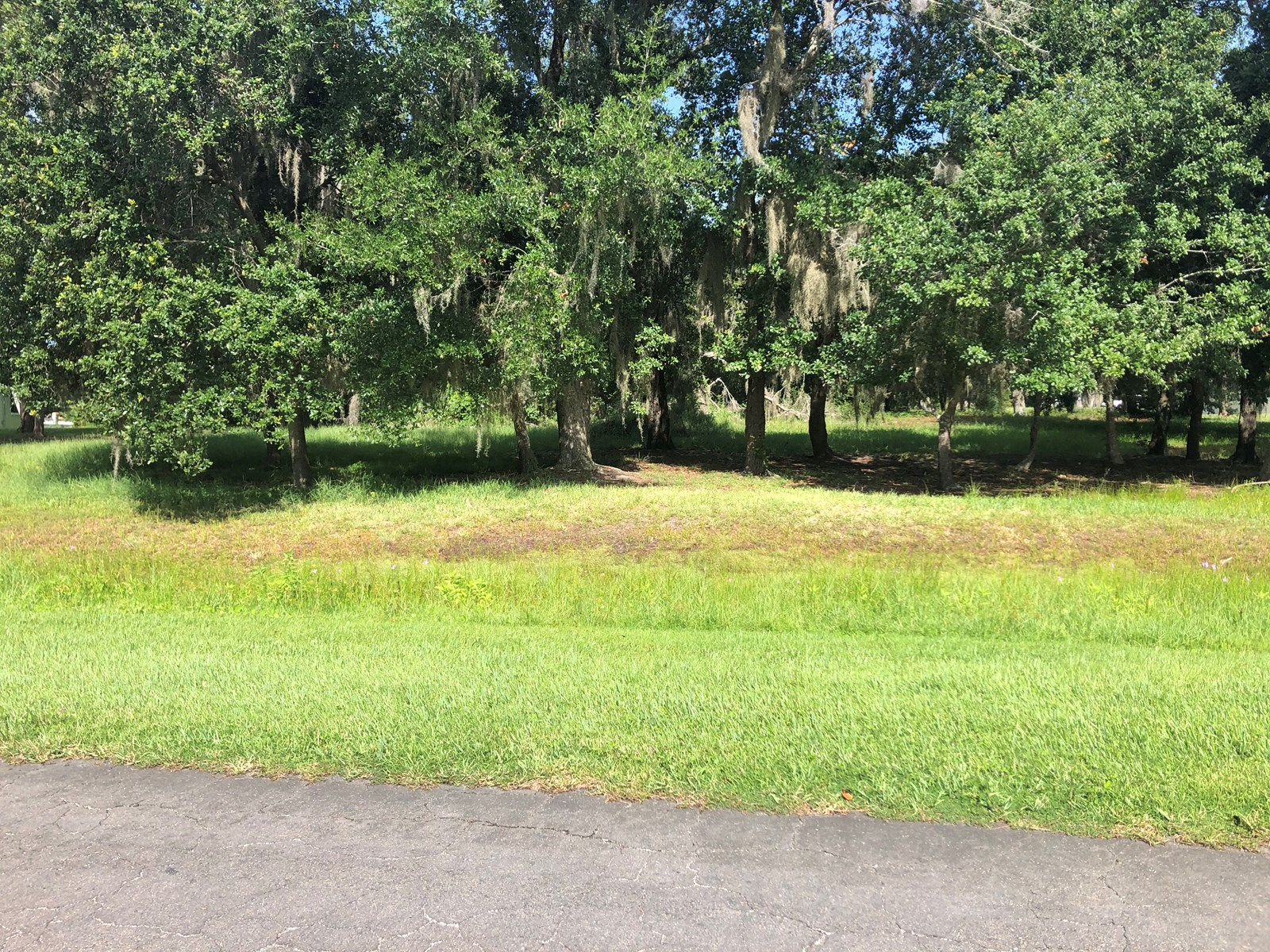 1 ACRE LOT, BUILD YOUR DREAM HOME, CENTRAL FL COMMUNITY