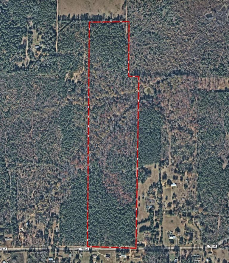 East Texas Timberland Tract