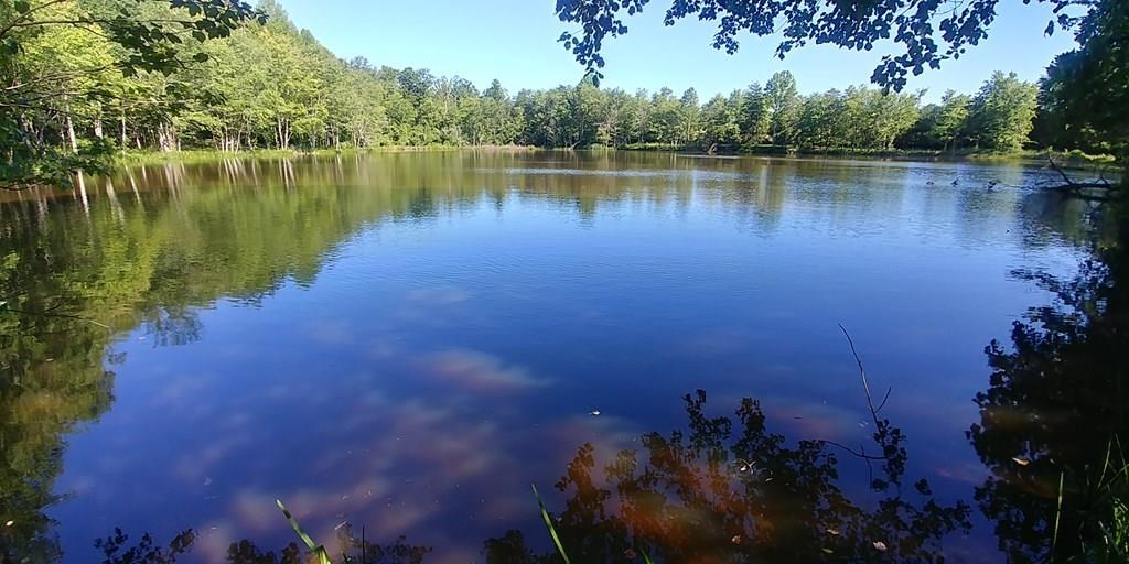 36 Cleared Acres with 3 Acre Pond