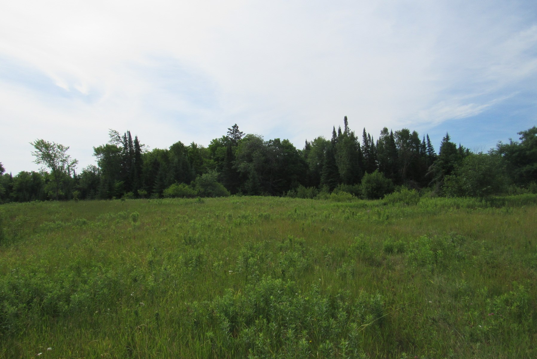 Acreage for Sale in Northern Minnesota, Carlton County Land