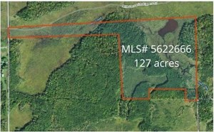 110 ACRES OF HUNTING LAND FOR SALE IN KANABEC CO
