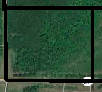 Beautiful 40 Wooded Acres for Sale in Kanabec Co