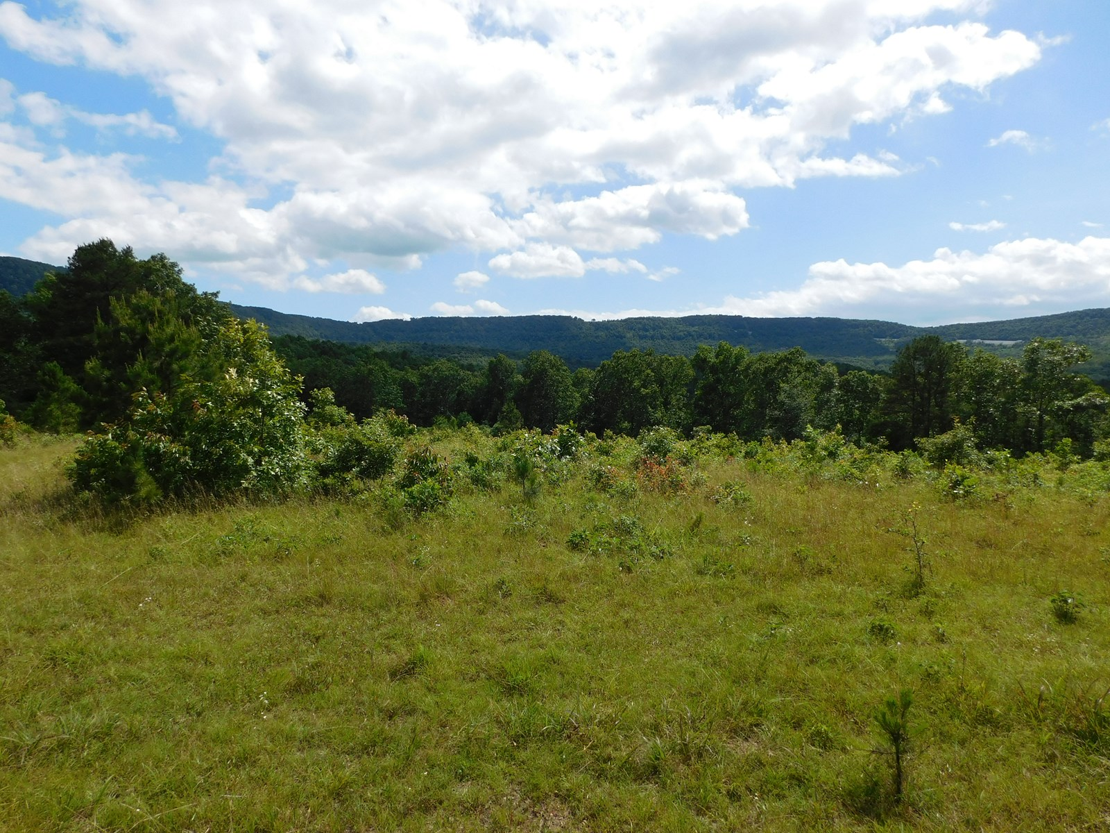 Hunting Recreational Spring Newton County For Sale