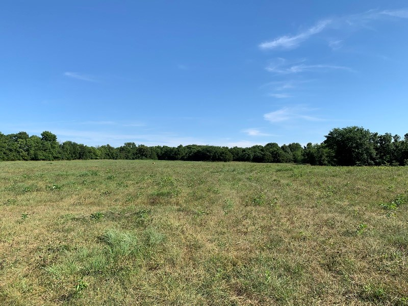 72 Acres of Pastureland in Cedar County