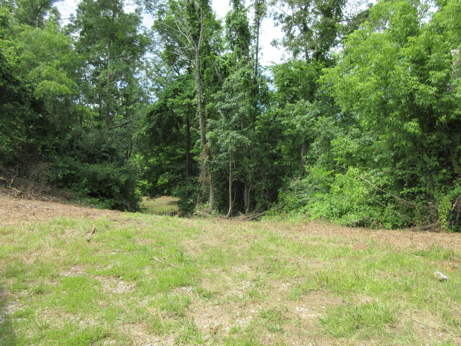 Ohio Hunting Land for Sale in Morgan County
