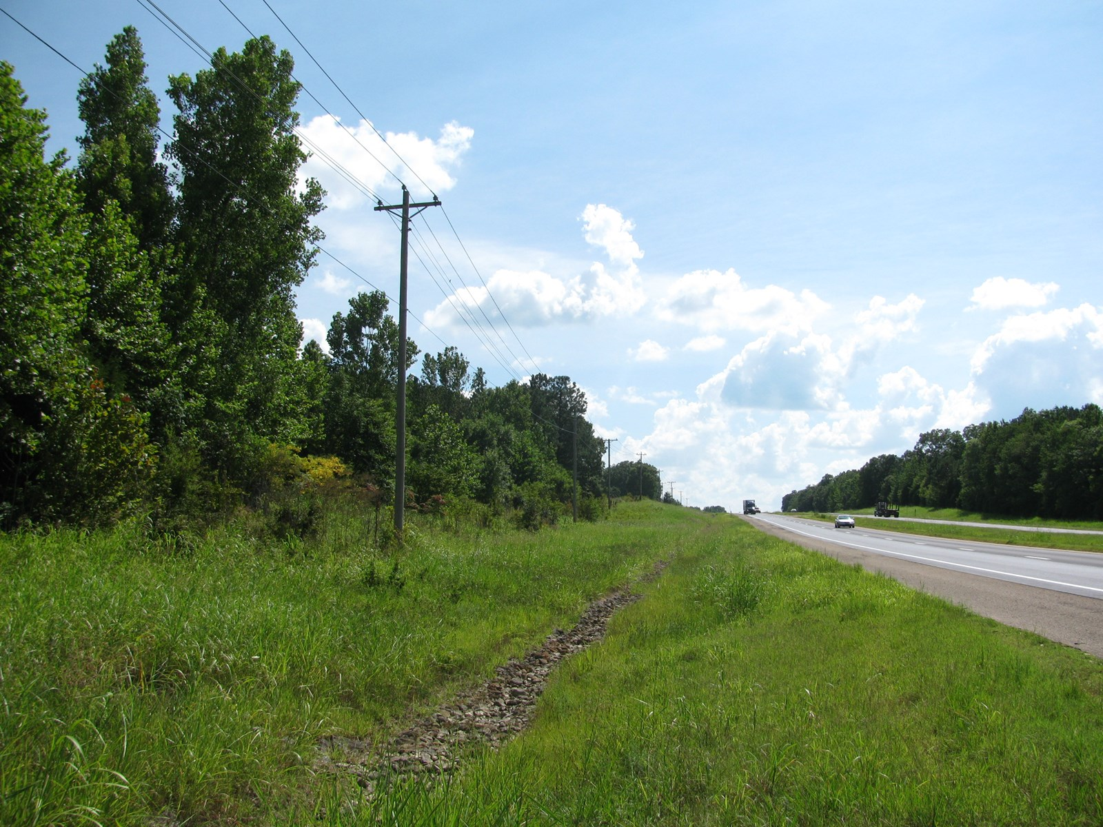 10 ACRES OF LAND FOR SALE IN ADAMSVILLE, TENNESSEE
