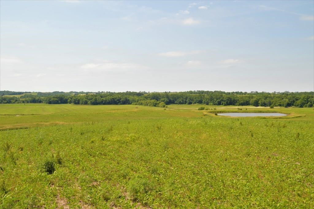 SULLIVAN COUNTY MO TILLABLE ROW CROP FARM WITH HUNTING