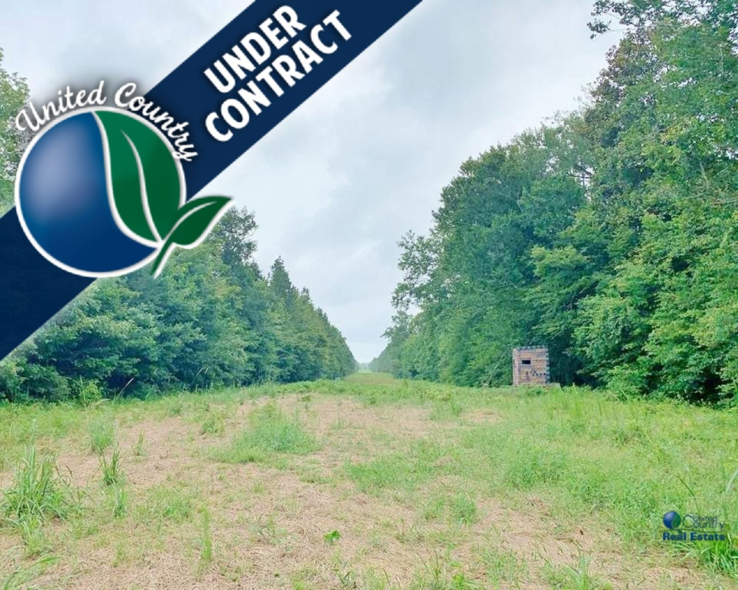 420 Acre Large Hunting Tract Great Timber Walthall Co, MS