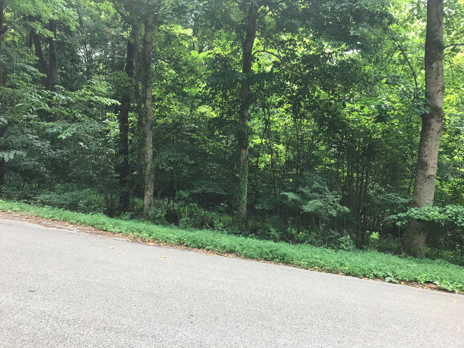 .66 Acre, Wisperwood Subdivision on Whispering Wood Road