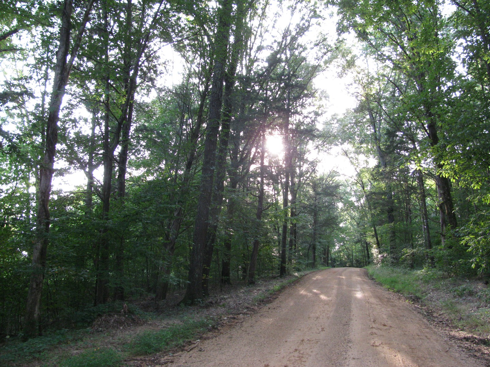 LAND FOR SALE IN TN, BUILDING SITES, CREEK - 21 AC