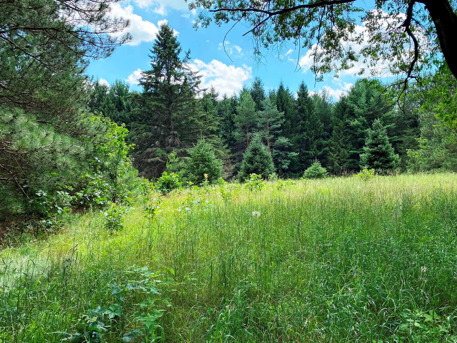 Hunters Paradise Marquette County WI