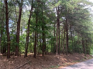 LAND FOR SALE IN BALL GROUND