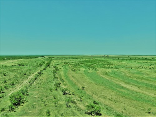 LARGE HUNTING RANCH NEAR SNYDER TX-SCURRY CO.
