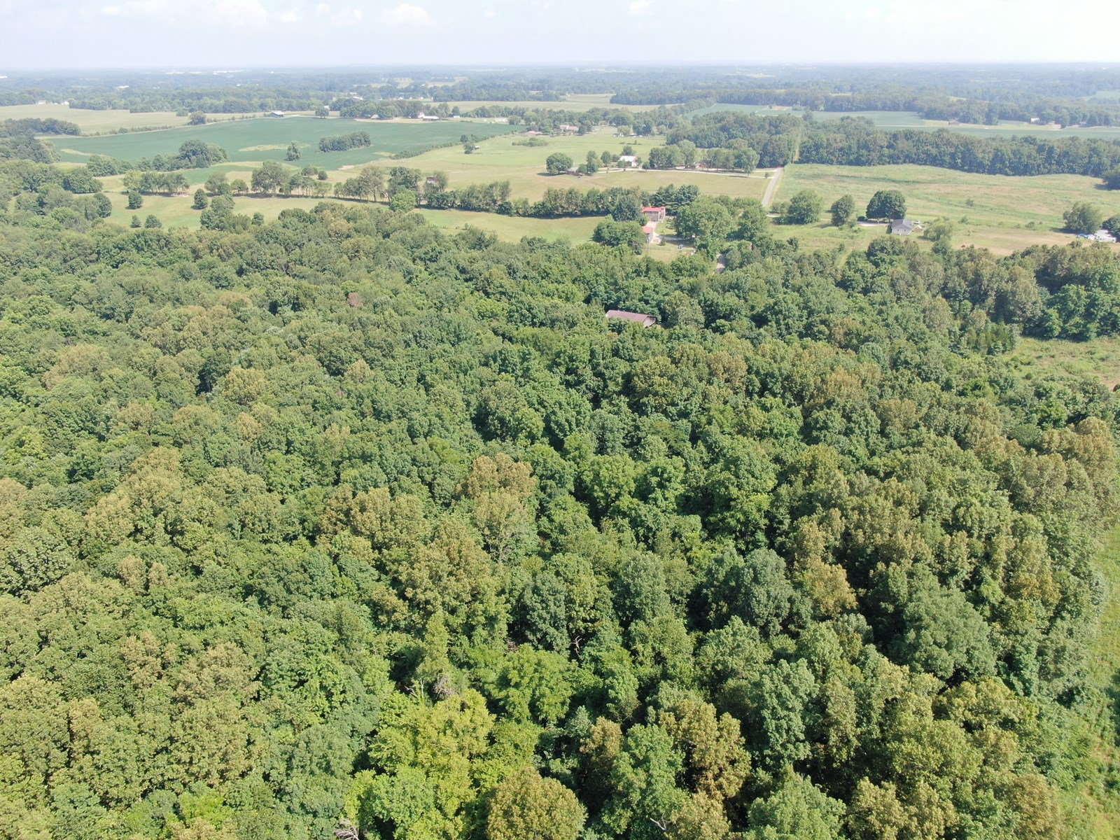 108 Wooded & Hunting Acres for sale in Simpson County Ky.