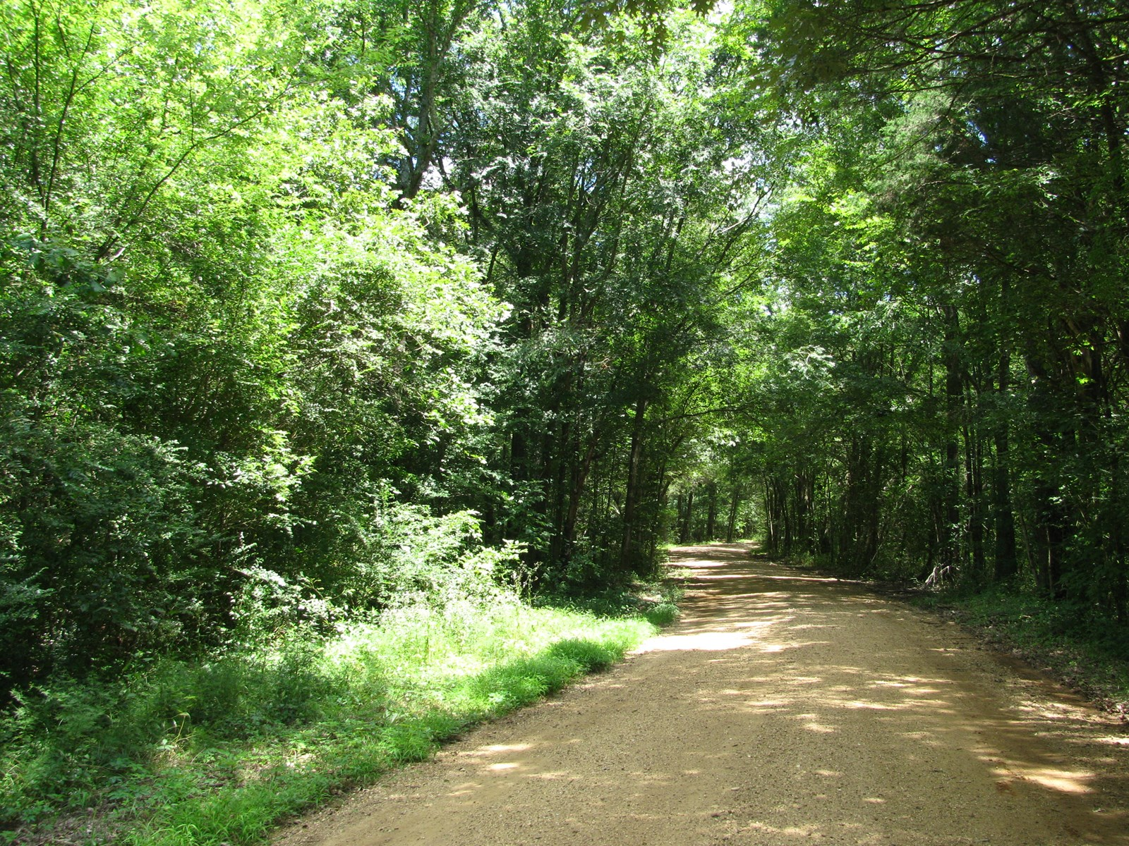17 ACRES OF LAND FOR SALE IN TN, BUILDING SITES, CREEK