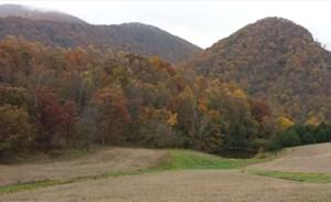 LARGE HISTORIC MOUNTAIN PROPERTY IN BUCHANAN, VIRGINIA